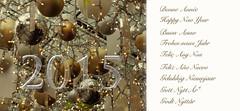 Bonne Année – Happy New Year (Michele*mp) Tags: france europe newyear wishes nouvelan felizanonovo vœux 2015 gelukkignieuwjaar felizañonuevo nouvelleannée frohesneuesjahr buonanno gottnyttår feliçanynou godtnytår onnellistauuttavuotta godtnyttår szczęśliwegonowegoroku michelemp