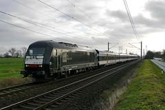 P1830182 (Lumixfan68) Tags: er siemens eisenbahn 20 nob 253 223 zge loks eurorunner baureihe mrce nordostseebahn marschbahn dieselloks