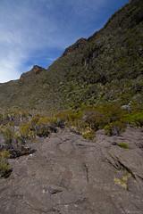 Piton de la Fournaise, le de la Runion (Alexandre Carpentier) Tags: voyage landscape runion lave volcan cratere pitondelafournaise 974 dolomieu ledelarunion basalte canon7d grr2 canon1018mm bazalte