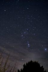Orion 24-12-2014 (Salisbury Exile) Tags: astrometrydotnet:status=solved astrometrydotnet:id=nova952824