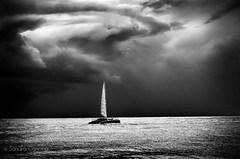 Thought is the Wind (sandracanning) Tags: ocean sky blackandwhite cloud seascape storm water monochrome clouds sailboat nikon florida fineart dramatic boyntonbeach d7000 sandracanning