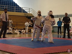 stefanou_15_5_2016_knockdown_270