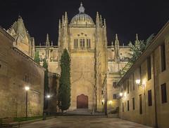 Catedral - Puerta Sur (R.Duran) Tags: espaa night noche spain nikon espanha europa europe nocturna salamanca espagne sigma1020mm castillayleon d7200