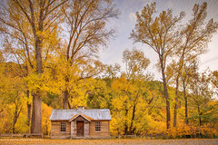 Historic Buildings In Arrowtown || SOUTH ISLAND || NZ (rhyspope) Tags: new autumn pope building tree fall weather yellow forest canon island town woods south cottage historic zealand nz queenstown 5d arrow rhys mkii rhyspope