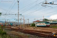 E.652.169 TI (Andrea Sosio) Tags: train ic italia liguria 169 treno tigre 681 intercity trenitalia ansaldo ferroviedellostato savona nikond60 e652 fiatferroviaria andreasosio parcodoria