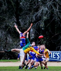 Footy in the Forest (Raoul's Photos) Tags: football australia gordon bulldogs afl daylesford