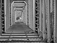 L&N Bridge (durand clark) Tags: cincinnati ohioriver newportkentucky purplepeoplebridge lnbridge olympusem5