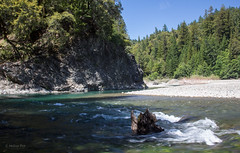 Wild and Scenic (San Francisco Gal) Tags: california cliff tree beach water rock river humboldtcounty eelriver conifer wildandscenicriver