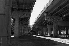 Toronto-7634 (Carrot Room) Tags: urban bw concrete decay freeway breakdown gardiner expressway cracked