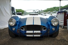 Shelby - AC Cobra