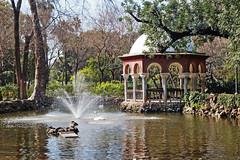 Places in the heart (VioletHill-) Tags: park trees sun sunlight lake flower color colour art public water fountain colors sunshine photography photo reina amazing sevilla spain perfect day colore foto arte place artistic photos places colores seville photograph fotografia artistica acqua colori comment spagna