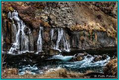 Hraunfossar falls 4960 (roswell433) Tags: west river lava waterfall iceland hraunfossar hvtriver