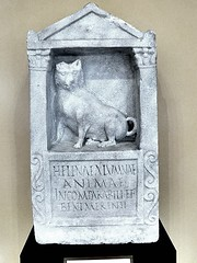 """Ancient Rome. Funerary stela, posibly dedicated to a dog of a girl named Helena. Inscription text: """"Helenae alumnae animae incomparabili et bene merenti"""", 2nd century AD (mike catalonian) Tags: dog stone relief ancientrome 2ndcenturyad funerarystela"""