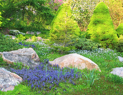 Dotted with Flowers (Cher12861) Tags: trees sunlight nature beauty landscape rocks may sunlit wheatonillinois cantignygardens spring2016