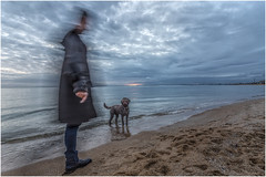 Is someone calling me? (RissaJT_23) Tags: sunset dog man beach water clouds canon bay sand ghost brightonbeach owner canon1740mm selectivehearing canon6d curlycoatretriever canoneos6d