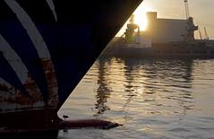 Marrakech sunset (PhillMono) Tags: travel sunset sun reflection ferry golden nikon ship seagull tourist morocco hour bow marrakech casablanca serene dslr bulge d7100