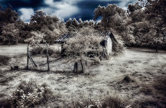 Abandoned Barn (Tonee Gee) Tags: park blue trees lake france flower tree yellow cat canon landscape squirrel dubai bordeaux surreal bamboo graves emirates khalifa infrared 630 parc burj topaz hoya tiffen 720 590 infrarouge majolan superblue g1x