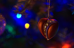 Merry Christmas with love (Violet aka vbd) Tags: christmas heart pentax bokeh connecticut ct ornament 2010 christmastreelights winter2010 vbd k200d smcpentaxda55mmf14sdm