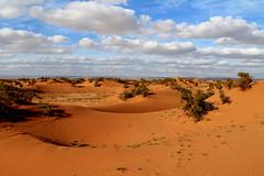 immensity (the rik pics) Tags: sahara sand desert morocco marocco deserto sabbia