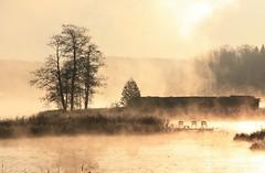 Lake Araisi, Latvia