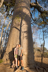 Posing in front of the sacred baobab - Madagascar July, 2104