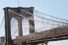 NEWYORK-1477