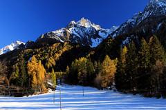 Herbst im Pfitschtal (mikiitaly) Tags: schnee italy herbst wald südtirol pfitschtal