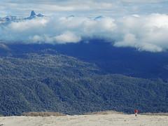 Vista al Valle del Golgol (Mono Andes) Tags: chile andes parquenacional chilecentral parquenacionalpuyehue regindeloslagos regindelosros volcnpuyehue cerropantojo