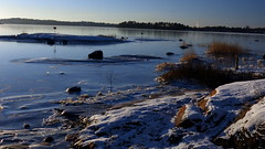 The southern shore of Seurasaari island (Helsinki, 20150106) (RainoL) Tags: winter sea finland geotagged helsinki january balticsea u helsingfors fin seashore seurasaari uusimaa 2015 nyland meilahti mejlans 201501 20150105 geo:lat=6017636042 geo:lon=2488535848
