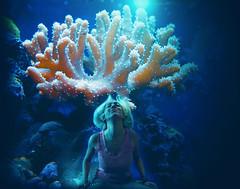 Coral Crown (Keren Rainbow) Tags: ocean pink blue sea orange art water girl coral rock photomanipulation marine rocks underwater artistic surrealism surreal fantasy blonde mermaid corals
