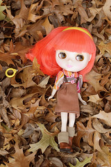 Fidelia in the leaves