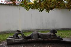 DSC_9371 (Original Loisi) Tags: tschechien czechrepublic hlubok moldau eskrepublika frauenberg hluboknadvltavou schlossfrauenberg schlosshlubok schlosshluboknadvltavou zamekhlubok schlossfrauenbergandermoldau zamekhluboknadvltavou