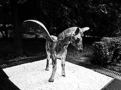 Pegasus from Tushino (ab web publication) Tags: park blackandwhite bw sculpture black noir noiretblanc moscow msk москва россия парк чернобелое olympuslens blackandwhiteonly тушино bodycaplens olympus15mmf80 bodycaplens15mm msknoir barhatovcom olympuspenepl6 photomsk