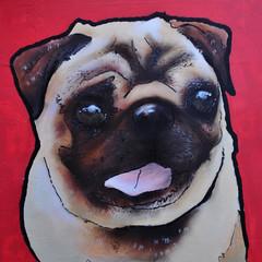 id-iom v Dogs Trust - Brighton pug detail (id-iom) Tags: uk dog streetart puppy graffiti stencil brighton pug adogisforlife dogstrust adifl
