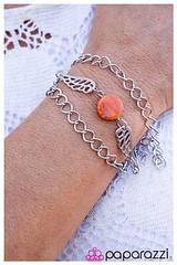 524_br-orangekit1may-box02