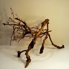 Donna's beautiful wood sculpture