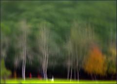 F_DSC5630-Nikon D800E-Nikkor 28-300mm-May Lee 廖藹淳 (May-margy) Tags: 喜悅攝影 joyofphotography maymargy fdsc5630 樹林 woods 光影 lightandshadows 倒影 reflection 水埤 pond 心象意象影像 blur 模糊 宜蘭市 ilancounty 台灣 taiwan 中華民國 repofchina nikond800e nikkor28300mm maylee廖藹淳 街拍 streetviewphotographytaiwan 心象攝影 心象 心象風景