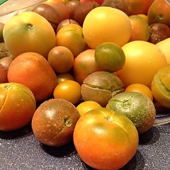 "After an entire week of bitterly cold weather, I need something for dinner that will remind me that we are one week closer to heirloom tomato season.   It's a good thing that we have so many heirloom cherry tomatoes from last year's garden in the freezer. • <a style=""font-size:0.8em;"" href=""https://www.flickr.com/photos/54958436@N05/16241180565/"" target=""_blank"">View on Flickr</a>"