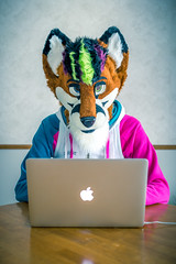 Fox in the Morning (Ice Foxx) Tags: male apple furry laptop crossdressing fox partial fursuit femboy femboi 91e207427274e5
