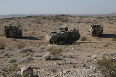 U.S. Army Soldiers assigned to Bravo troop, 1st squadron, 14th Cavalry Regiment, 1st Brigade Combat Team, 2nd Infantry Division, provide security during Decisive Action Rotation 16-06 at the National Training Center in Fort Irwin, Calif., May 10, 2016. (U (Operations Group, National Training Center) Tags: california usa soldiers stryker fortirwin ftirwin nationaltrainingcenter 2ndinfantrydivision 1stbrigadecombatteam bravotroop 1stsquadron 14thcavalryregiment ntc1606