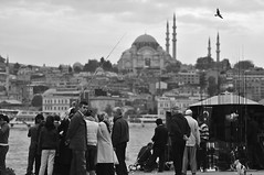 Look where nobody is looking .. Awareness (ilmikadim) Tags: sea people blackandwhite bw seascape black bird standing turkey coast seaside looking minaret seagull istanbul mosque magnum handline