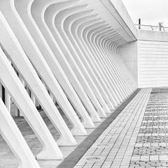 guillemins XI (>>nicole>>) Tags: monochrome station architecture square bahnhof railwaystation trainstation architektur monochrom luik santiagocalatrava lige belgien quadrat lttich ligeguillemins garedeligeguillemins