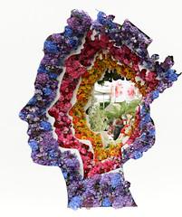 Chelsea Flower Show 2016 (Simon Caunt) Tags: show flower london chelsea er head bbc 90 hrh elizabethii majesty 2016 royalhospitalchelsea coventgardenmarket summershere summersnearlyhere happybirthdayyourmajesty mamrymeswithjam bettyshead