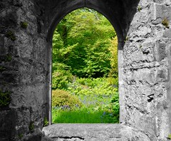 Through the Arch (rustyruth1959) Tags: flowers building green window grass architecture garden scotland nikon arch isleofskye stonework ruin highland laundry armadale selectivecolour nikond3200 sleat armadalecastle