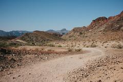 5R6K2393 (ATeshima) Tags: arizona nature havasu