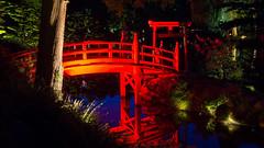 DSC05457 (regis.verger) Tags: temple zen nuit parc nocturne asiatique vgtal maulvrier