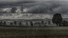 Toscana-like landscape in bavarian rain (Florian Grundstein) Tags: trees sky field rain weather clouds skyscape landscape soft himmel wolken olympus hills landschaft bume gewitter regen wetter omd hgel bsche