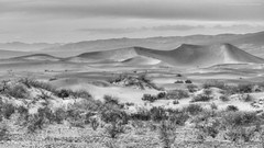 Sand dunes in black and white (Jodi Newell) Tags: california travel people nature canon landscape nationalpark sand dunes deathvalley wildflowers february sanddunes vast 2016 superbloom jodinewell jodisjourneys wildflowersuperbloom jodisjourneysphotosgmailcom
