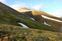 Mskarshnjkar (Freyja H.) Tags: iceland mskarshnjkar mountain mountainside scree rock moss nature landscape outdoor sky cloud snow mosi lambagras sileneacaulis cushionpink mosscampion