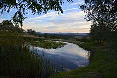 My birthday's evening (Antonio Cinotti ) Tags: landscape paesaggio toscana tuscany italy italia siena hills colline campagnatoscana cretesenesi asciano nikond7100 nikon d7100 rollinghills nikon1685 sunset tramonto
